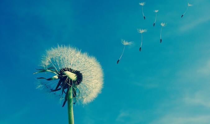 benefici della respirazione